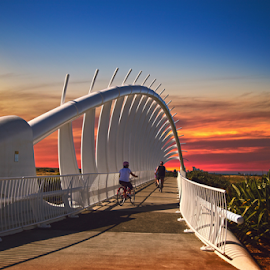 Te Rawa bridge at Dusk  by Anupam Hatui - Buildings & Architecture Bridges & Suspended Structures ( structure, sunset, bridge, taranaki, golden hour,  )