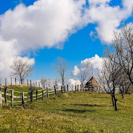 Spring day by Gligor Mihai - Landscapes Prairies, Meadows & Fields