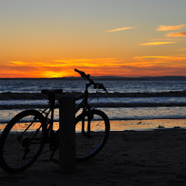 Cycle of tides by Pete Watson - Transportation Bicycles ( sands, bike, groynes, waves, sunset, posts, tide, sea, beach, coastal, bicycle )