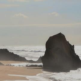 Pescando by Tacito Alexandro - Nature Up Close Sand ( fishing,  )