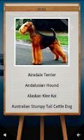 Screenshot of QuizTutor:Dogs