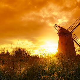 by Andrew Doyle - Buildings & Architecture Decaying & Abandoned ( sunset, feild, beautiful, sail, sails, gold, beauty, sunlight, light, sun )