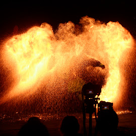 the fiery phoneix by Bill Lawton - People Musicians & Entertainers ( amazing, incredible, performance, fireperformer, fire,  )