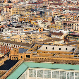 Rome's Roof Tops by Ciarán de Buitléir - City,  Street & Park  Vistas ( abstract, tiles, rome, vista, roof tops, italy, baby, young, animal )