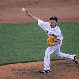 Koji by Amy Vaughn - Sports & Fitness Baseball ( red sox, baseball, sports, pitcher, sports action )
