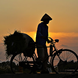on afternoon by Yudi Dhaniwanto - Transportation Bicycles ( bicycle )