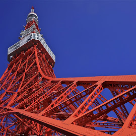 tokyo tower by Sim Kim Seong - Buildings & Architecture Statues & Monuments