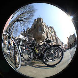 Bike by Renato Melo - Transportation Bicycles