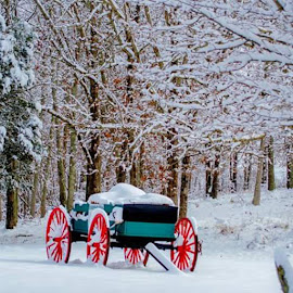 by Robert Garrison - Transportation Other ( snow, wagon, winter )