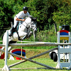 Showjumping by Lilla Kozmáry - Sports & Fitness Other Sports