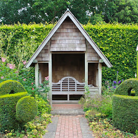 Benches & hedges by James Whiting - Nature Up Close Gardens & Produce