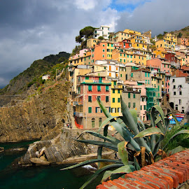 Cinque Terra  by Catherine Tolton - Landscapes Travel ( cinque terre, village, cinque terra, mediterranean, harbour, riomaggiore, weather, seaside, travel, italy, hike, hiking )