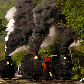 The Race by Vicki Pardoe - Transportation Trains ( cass, west virginia, steam engines, race, trains )