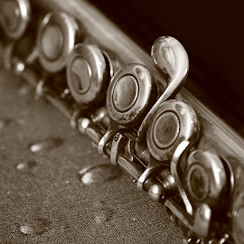 clarinet by Charles KAVYS - Artistic Objects Musical Instruments ( sepia, musical, clarinet, black, instruments,  )