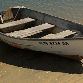 Old Rowboat on Balboa Island by Trudi Crookshanks - Digital Art Things ( water, sand, old, wood, rope, white, rowboat )