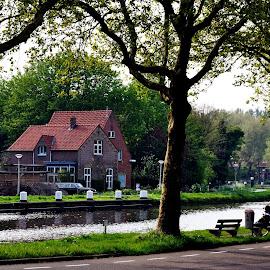 Riverside House  by Cengiz Tasci - Buildings & Architecture Homes ( riverside, trees, road, house, landscape )
