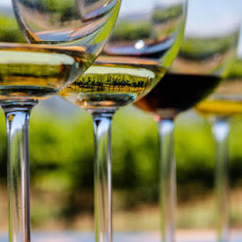 Vineyard in a glass by Neville Nel - Food & Drink Alcohol & Drinks ( abstract, wine, glass, wine glass abstract )