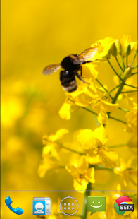 Bumble Bee Live Wallpaper - screenshot