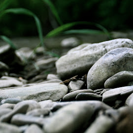 Creekside.  by Matthew Gibney - Nature Up Close Rock & Stone