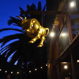 Port Costa, California by Kathleen Koehlmoos - City,  Street & Park  Markets & Shops ( port costa, california, port costa california, sf bay area, interesting signs )