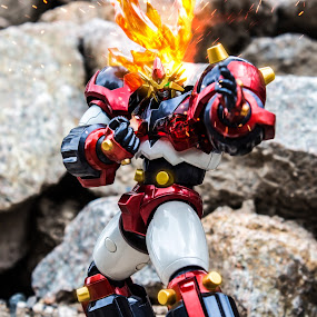 Marriage of God and Soul by Ty Hanson - Artistic Objects Toys ( godannar anime manga mecha giant robot finchzero photography )