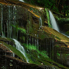 Waterfall Garden 1, Twin Falls by Jonathan Wheeler - Landscapes Waterscapes ( waterfalls, south carolina mountains, rivers, twin falls, hanging gardens )