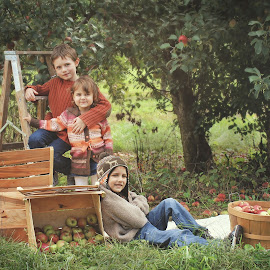 Apple picking by Kitty Schaub - People Family ( farm, family, apple, fall, children )