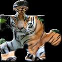 Tiger-Puzzle icon