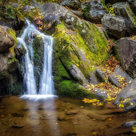Dark Hollow Falls Cascade by Stevan Tontich - Nature Up Close Water