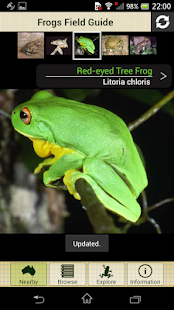 Frogs Field Guide - screenshot