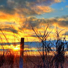Fenced Off by Derrill Grabenstein - Landscapes Prairies, Meadows & Fields ( fence, pasture, sunset, landscape, prairie )