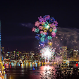Fireworks by Eric Zhang - Public Holidays New Year's Eve