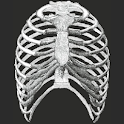 Gray's Anatomy Mobile icon