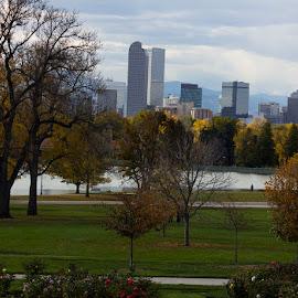 Fall in City Park by Hannah Maison - City,  Street & Park  City Parks ( park, fall, denver, lake, color, colorful, nature )