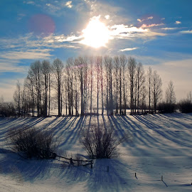 Winters Calm by Kirby Hornbeck - Landscapes Prairies, Meadows & Fields ( clouds, winter, sky, cold, snow, trees, sun )