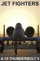Screenshot of A-10 Thunderbolt II ● PRO