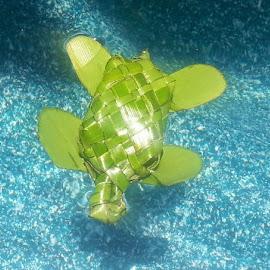 Honu Turtle by Melissa Keller - Artistic Objects Other Objects ( niu, coconut frond, turtle, honu, weaving,  )
