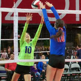 Block! by Beth Staub - Sports & Fitness Other Sports ( girls, volleyball, club, arizona, university of phoenix stadium, sports, girls sports, sport, travel, club volleyball, glendale )