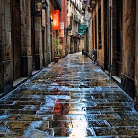 A street in Barcelona by Antonio Amen - City,  Street & Park  Street Scenes ( typical, street, wet, barcelona, spain )
