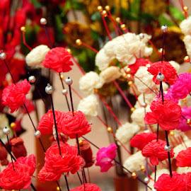 untitled by Debarpan Naha - Abstract Macro ( macro, pattern, beauty, close up, flower )