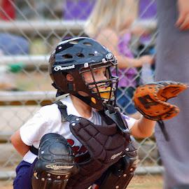 Little League Catcher by Kathryn Stengel - Sports & Fitness Baseball ( dixie youth league, catcher, baseball, sports, summer, little league, Baseball  )