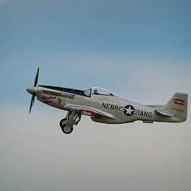 P51 Mustang by Mike Woodard - Transportation Airplanes ( p51, wwii, vintage )