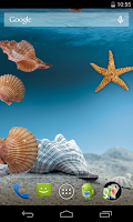 Screenshot of Sea shells Live Wallpaper