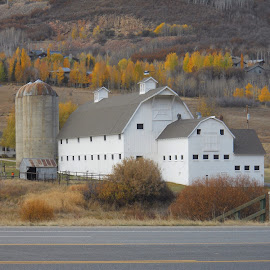 Barn in Park City Utah by Mary Dayton - Buildings & Architecture Public & Historical