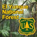 Bosque Nacional El Yunque App icon