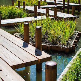 by Matt Meyers - City,  Street & Park  City Parks ( st louis, path, japanese gardens, garden, missouri botanical garden )