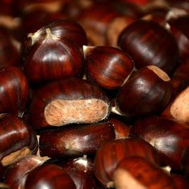 chestnut by Tristan Garisson - Food & Drink Fruits & Vegetables (  )