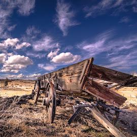 Buckboard on the Prairie by Gary Hanson - Artistic Objects Antiques ( brokendown, colorado, wolf creek pass, pagosa springs, prairie, buckboard,  )