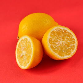 Lemons by Tim Hoggarth - Food & Drink Fruits & Vegetables