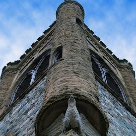 Church Bell Tower with Eagle by Diane Plevelich - Buildings & Architecture Architectural Detail